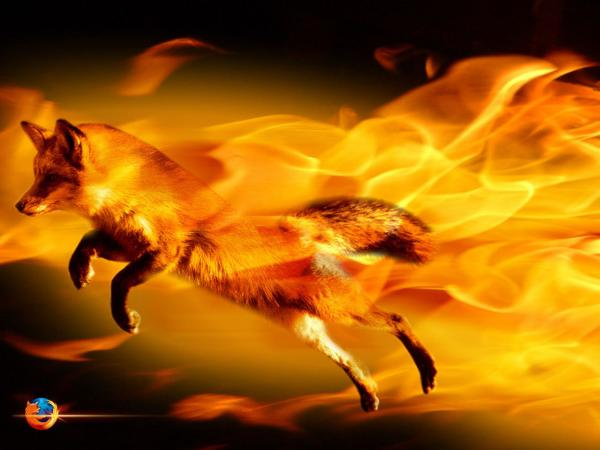 3D Fire fox fire wallpapers 600x450