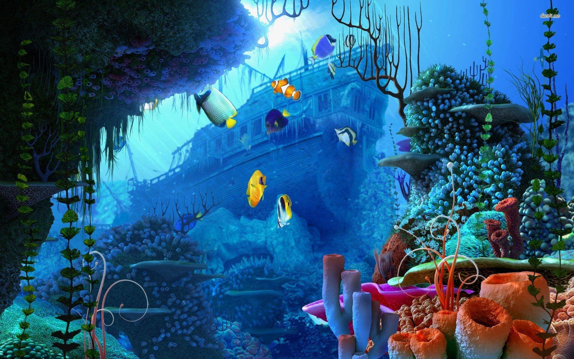 Underwater Scenes Desktop Wallpaper - WallpaperSafari
