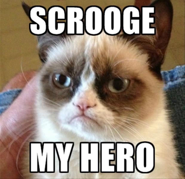 Grumpy Cat Quotes QuotesGram 620x602