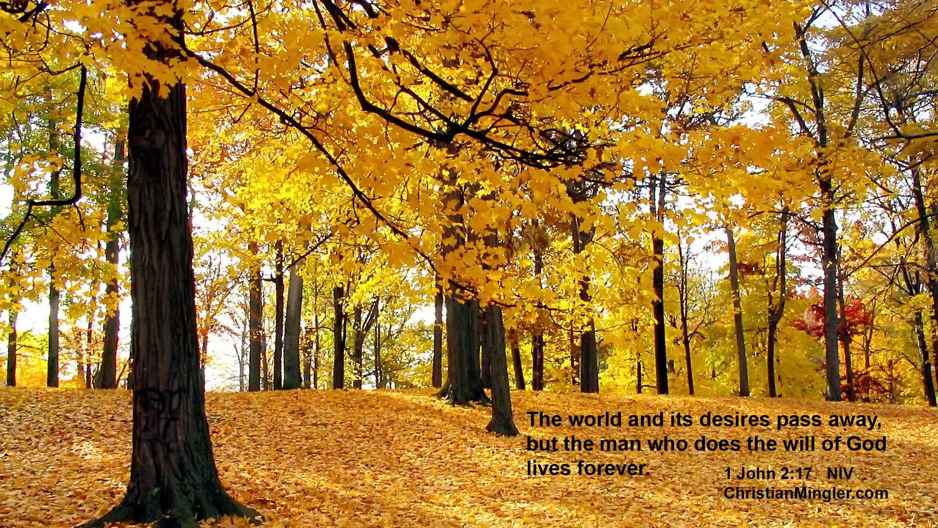 Autumn Scriptures Verses Wallpaper 39 images 1920x1080