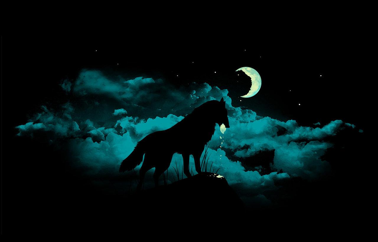 Hd wallpaper moon - Wolf Moon Wallpaper 10639 Hd Wallpapers In Animals Imagesci Com