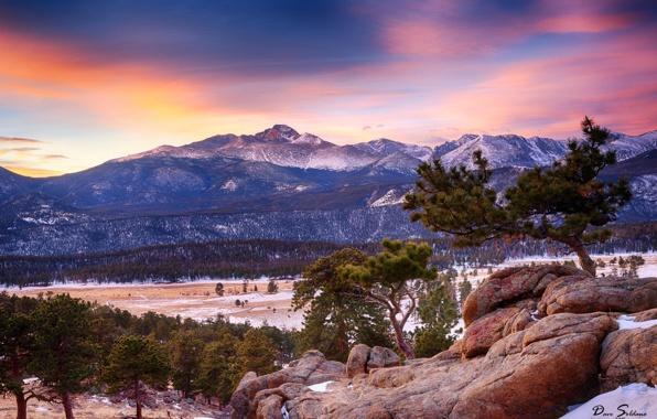 Wallpaper colorado rocky mountain national park mountain forest 596x380