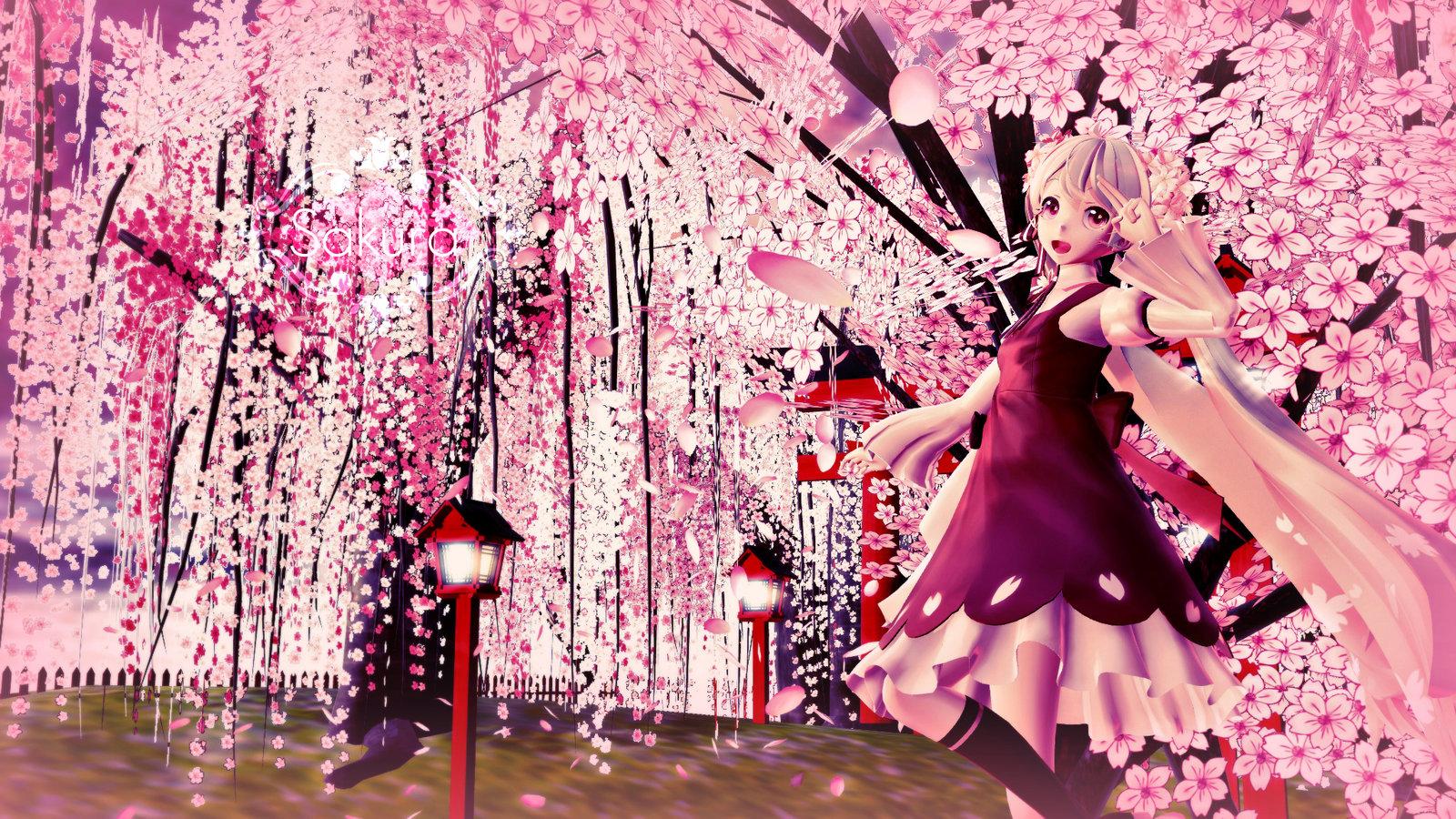 Sakura wallpaper hd wallpapersafari - Sakura desktop ...