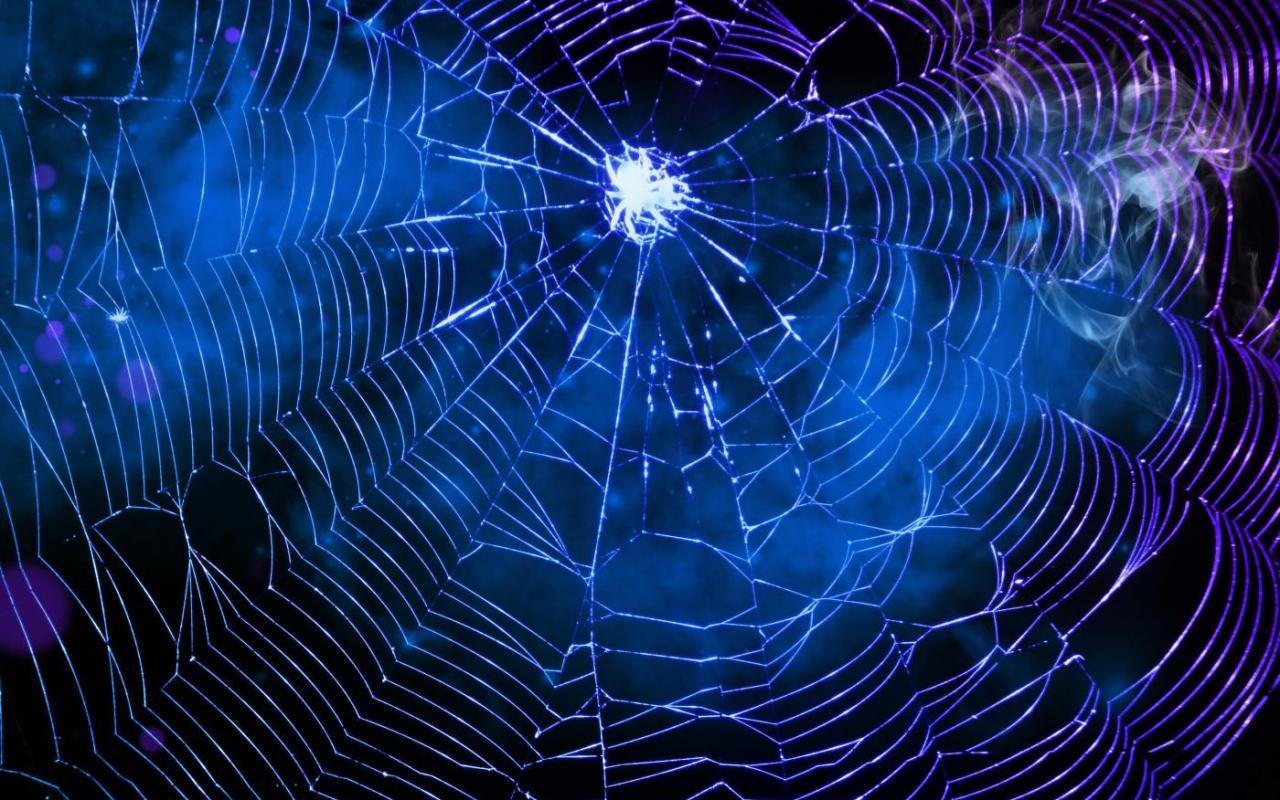 SPIDER S WEB WALLPAPER   138529   HD Wallpapers   [desktopinHQcom] 1280x800