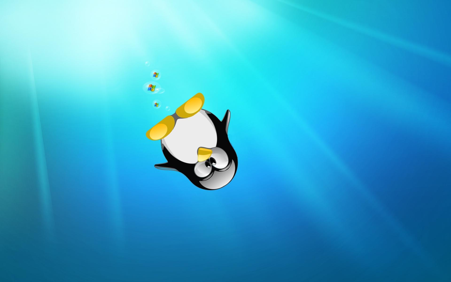 Linux Wallpaper Penguin in the Sea Wallpaper Desktop HD 1920x1200