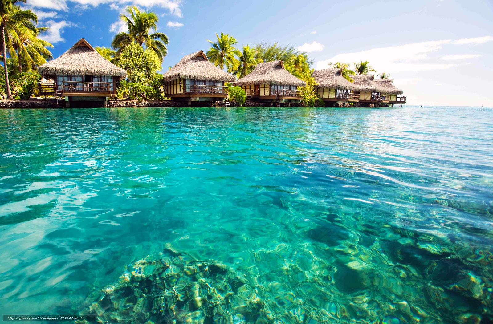 New Providence Island, Bahamas  № 1471737 без смс