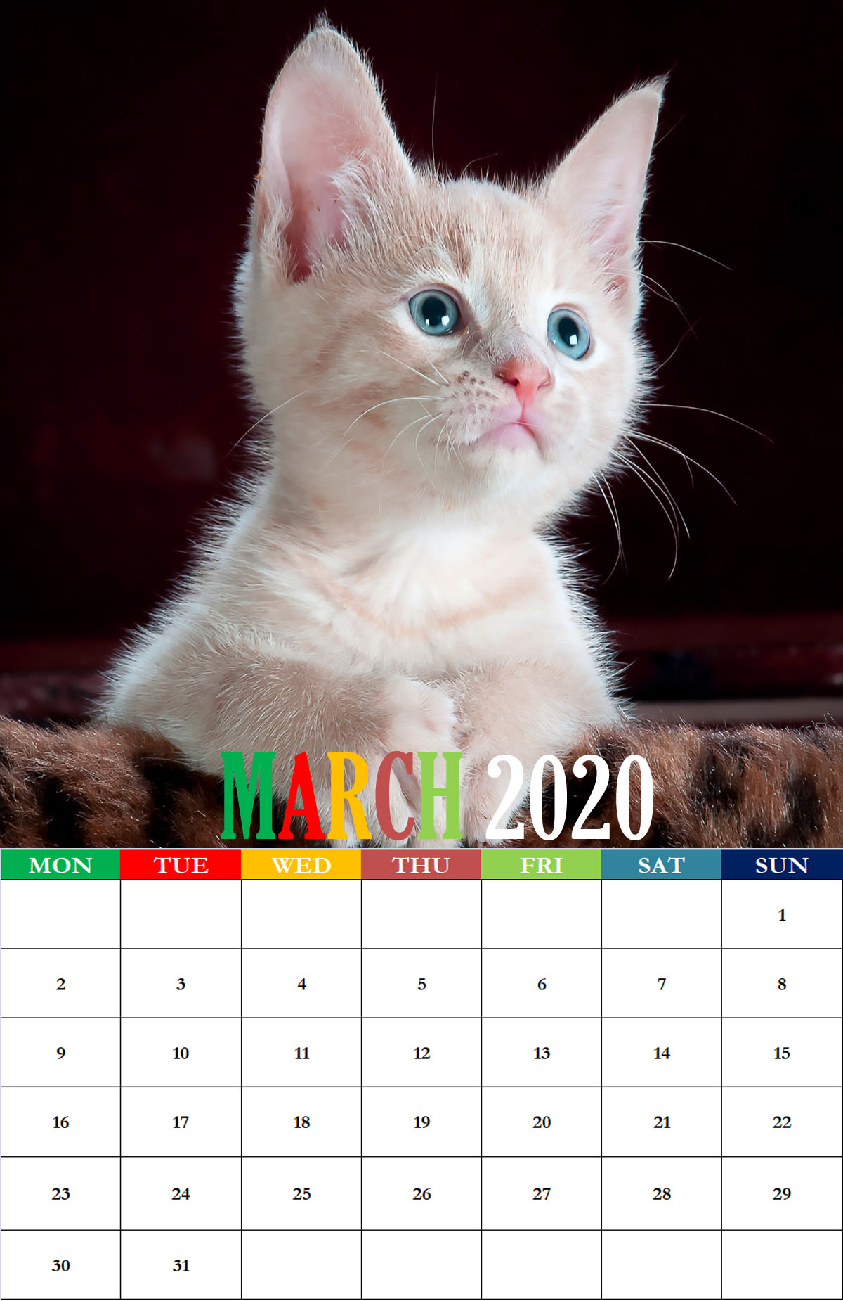 2020 March Calendar Wallpapers For iPhone Desktop Mobile Tablets 1200x1850