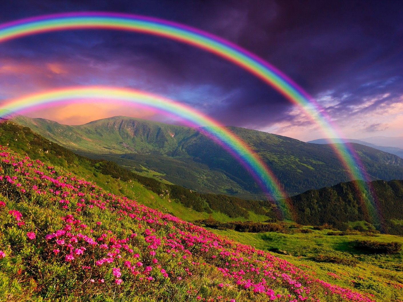 Free Download Rainbow Sky Wallpapers Top Rainbow Sky Backgrounds 1411x1058 For Your Desktop Mobile Tablet Explore 35 Natural Rainbow Hd Wallpapers Natural Rainbow Hd Wallpapers Natural Rainbow Wallpaper Hd Natural Wallpaper