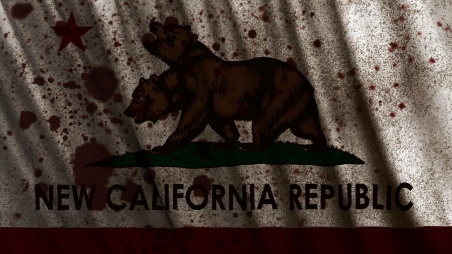 Free download Fallout New California Republic Flag Wallpaper