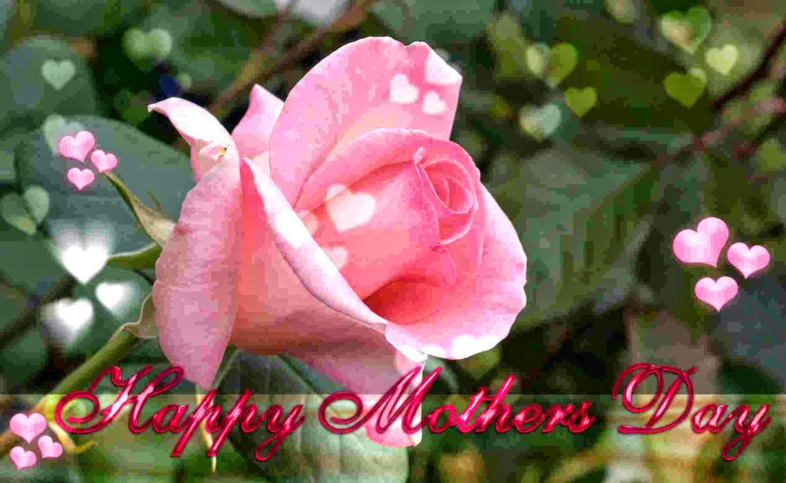 Happy Mothers Day HD Wallpapers Photos Pics Images 1600x983