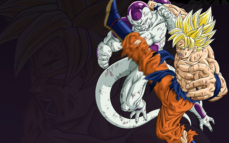 frieza goku dragon ball z 1280x800 wallpaper Anime Dragonball HD 800x500