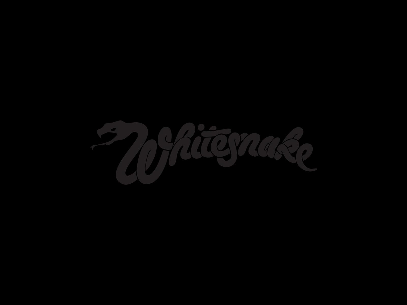 Whitesnake band logo and wallpaper 1600x1200