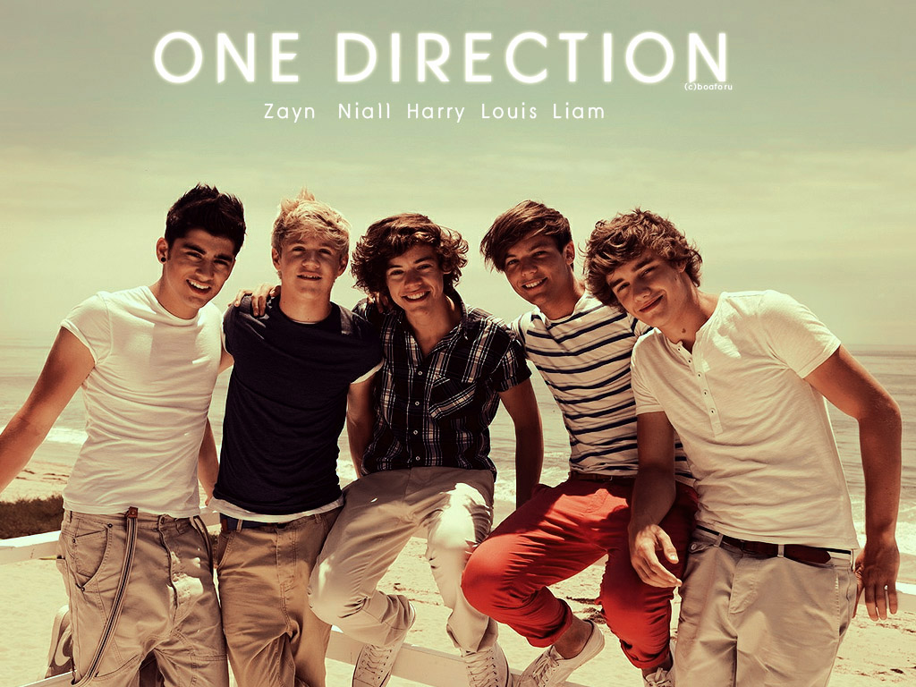 Best One Direction Wallpapers Cool HD Wallpapers 1024x768