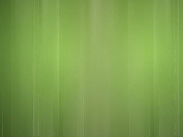 plain wallpaper 2015   Grasscloth Wallpaper 640x480