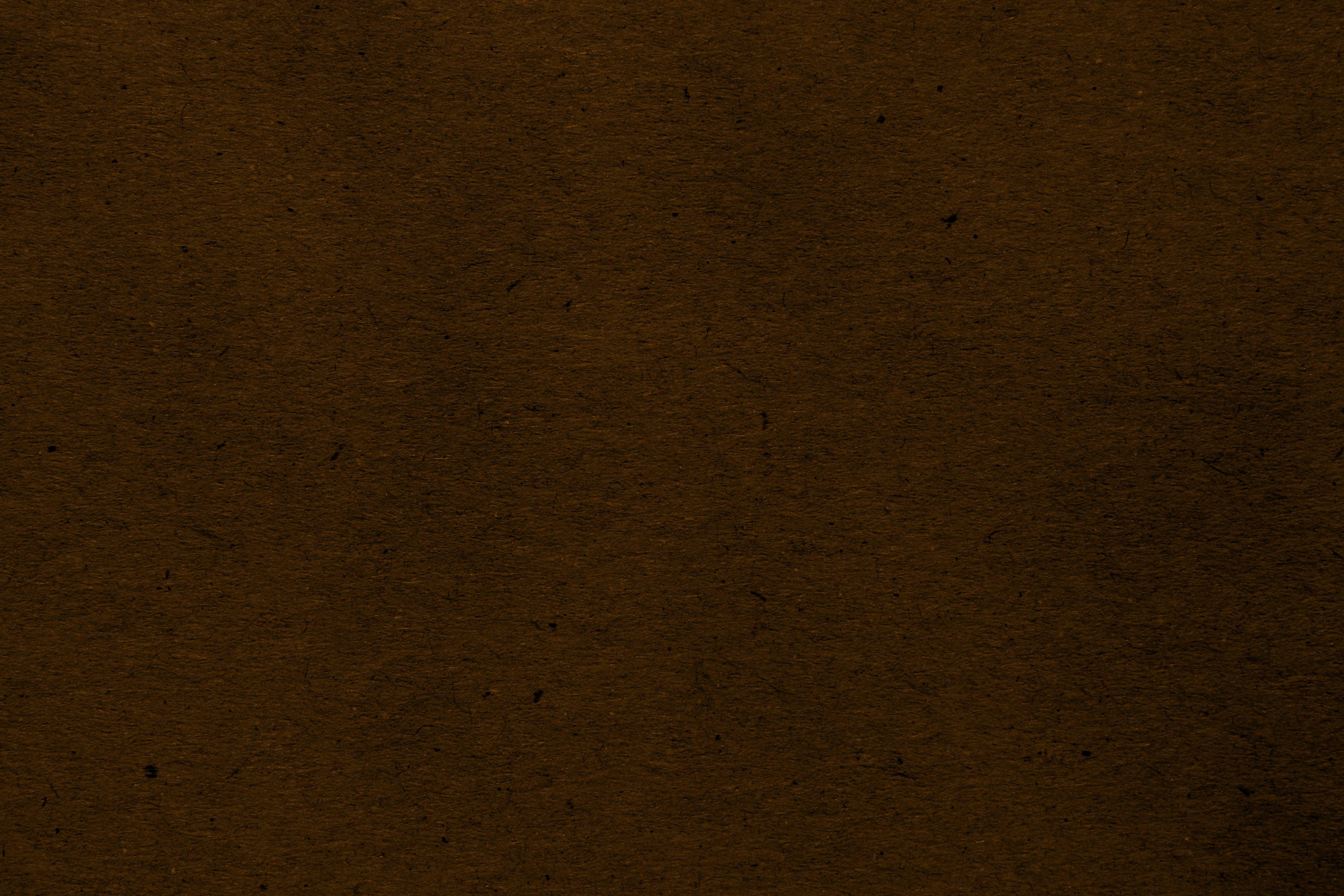 Chocolate Brown Wallpaper 23 Background Wallpaper   Hivewallpapercom 3888x2592
