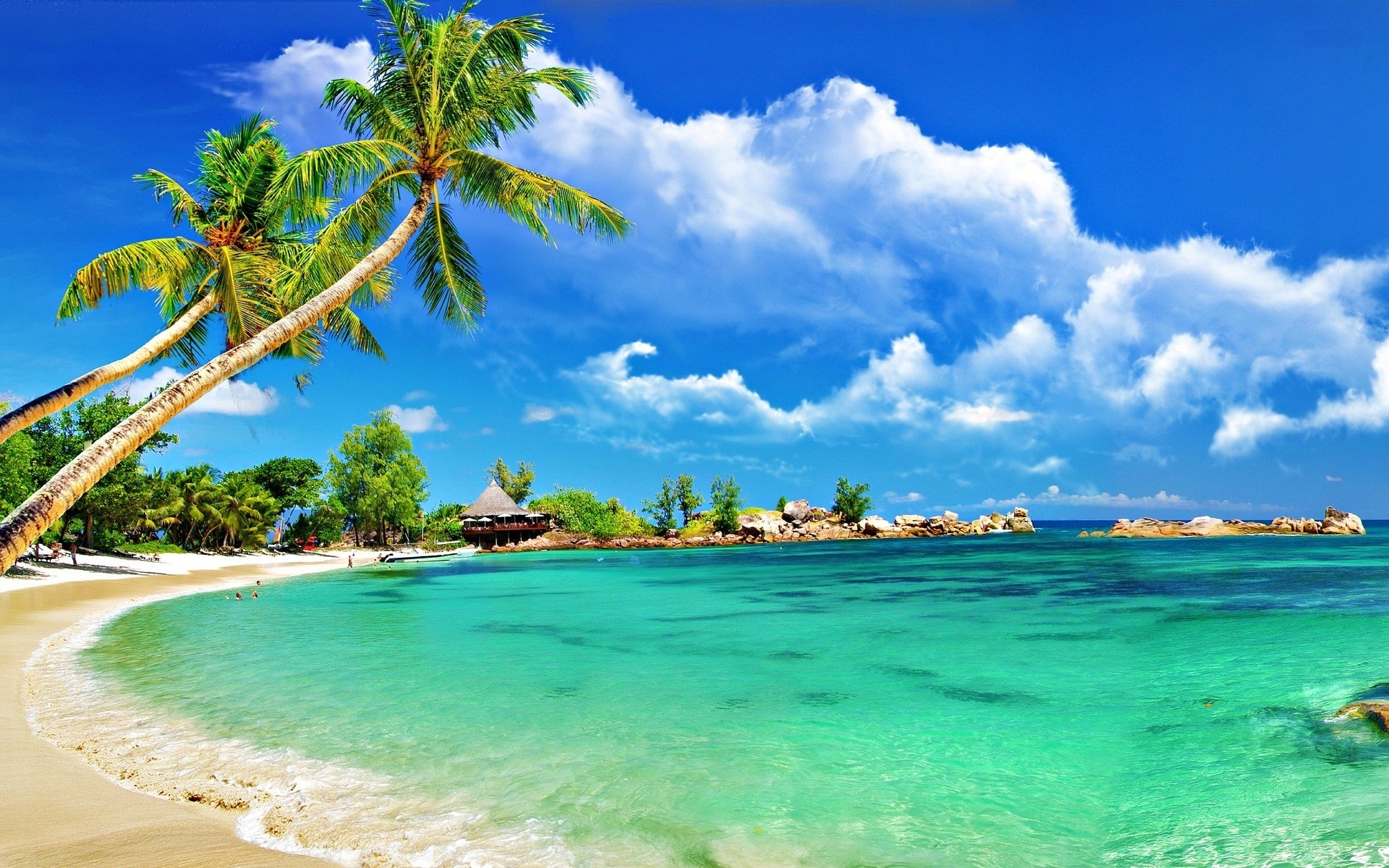 tropical beach computer wallpaper