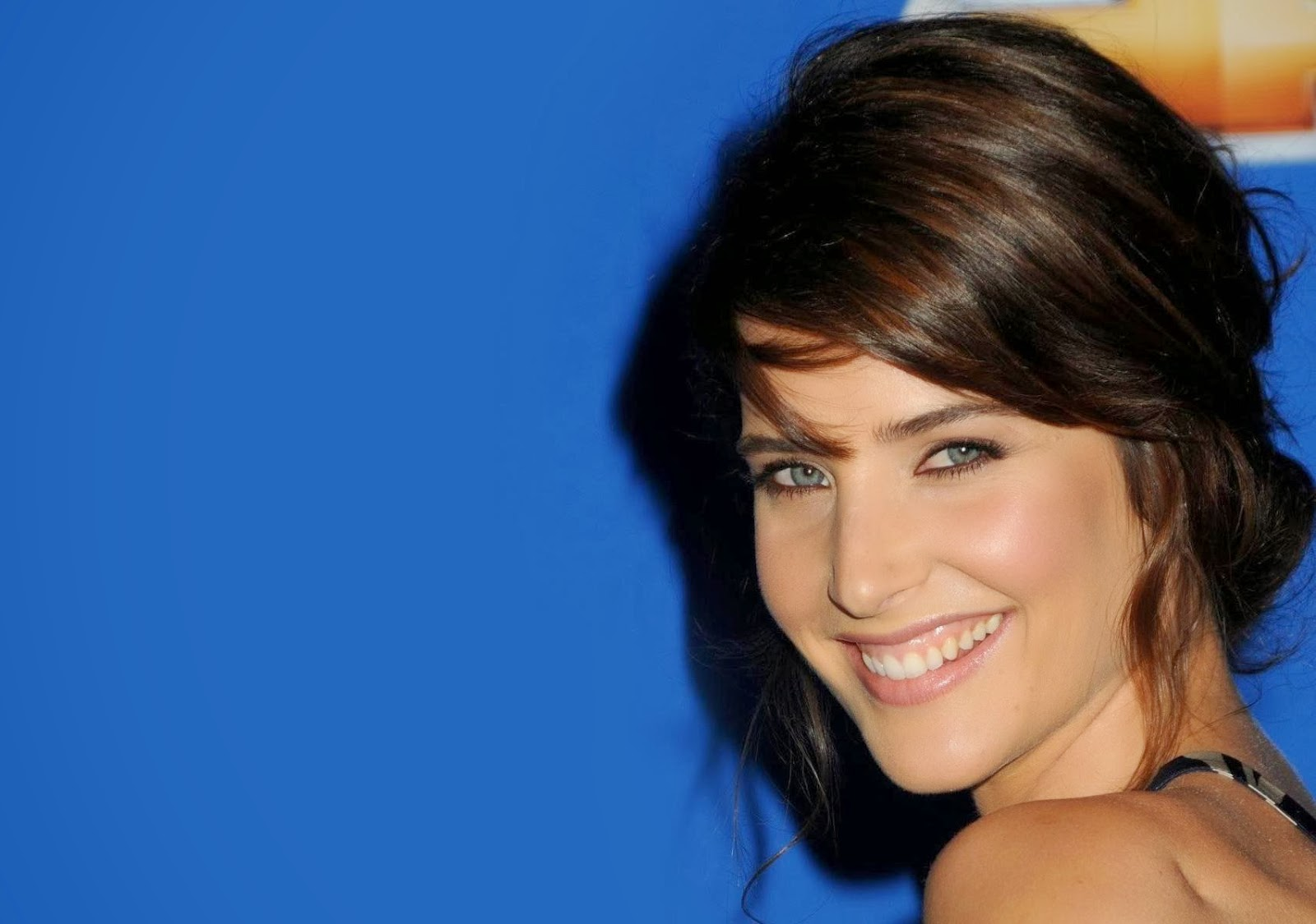 Cobie Smulders HD Wallpaper Beautiful Every Wallpaper 1600x1125