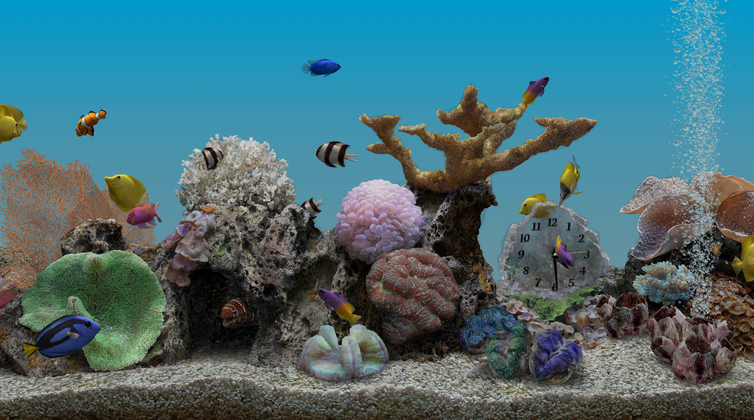 Marine Aquarium 32 Live Wallpaper v111 ApkTechGlen TechGlen Apps 754x420