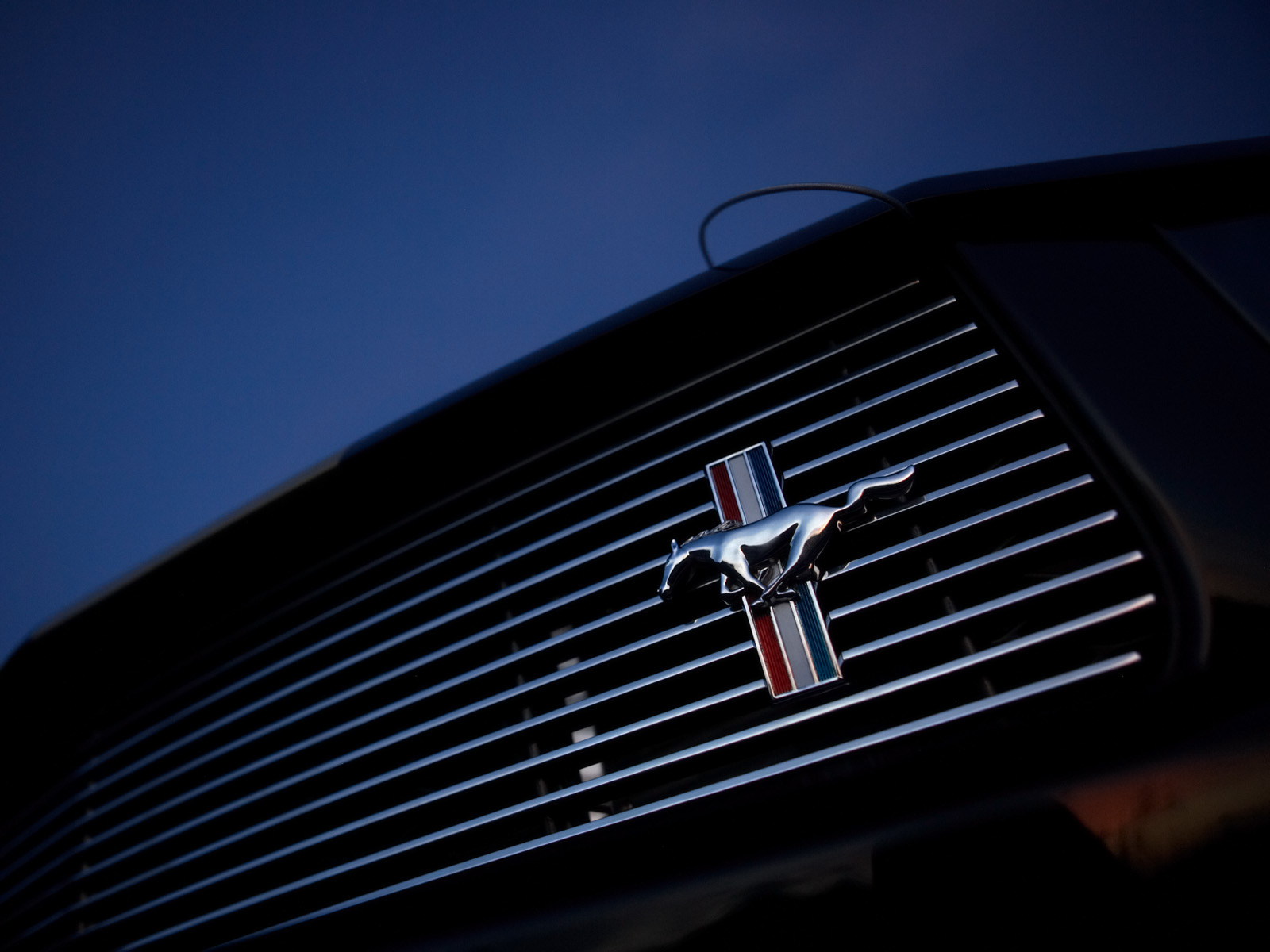 2006 Ford Shelby GT H Mustang   Grille   Emblem   1600x1200 Wallpaper 1600x1200