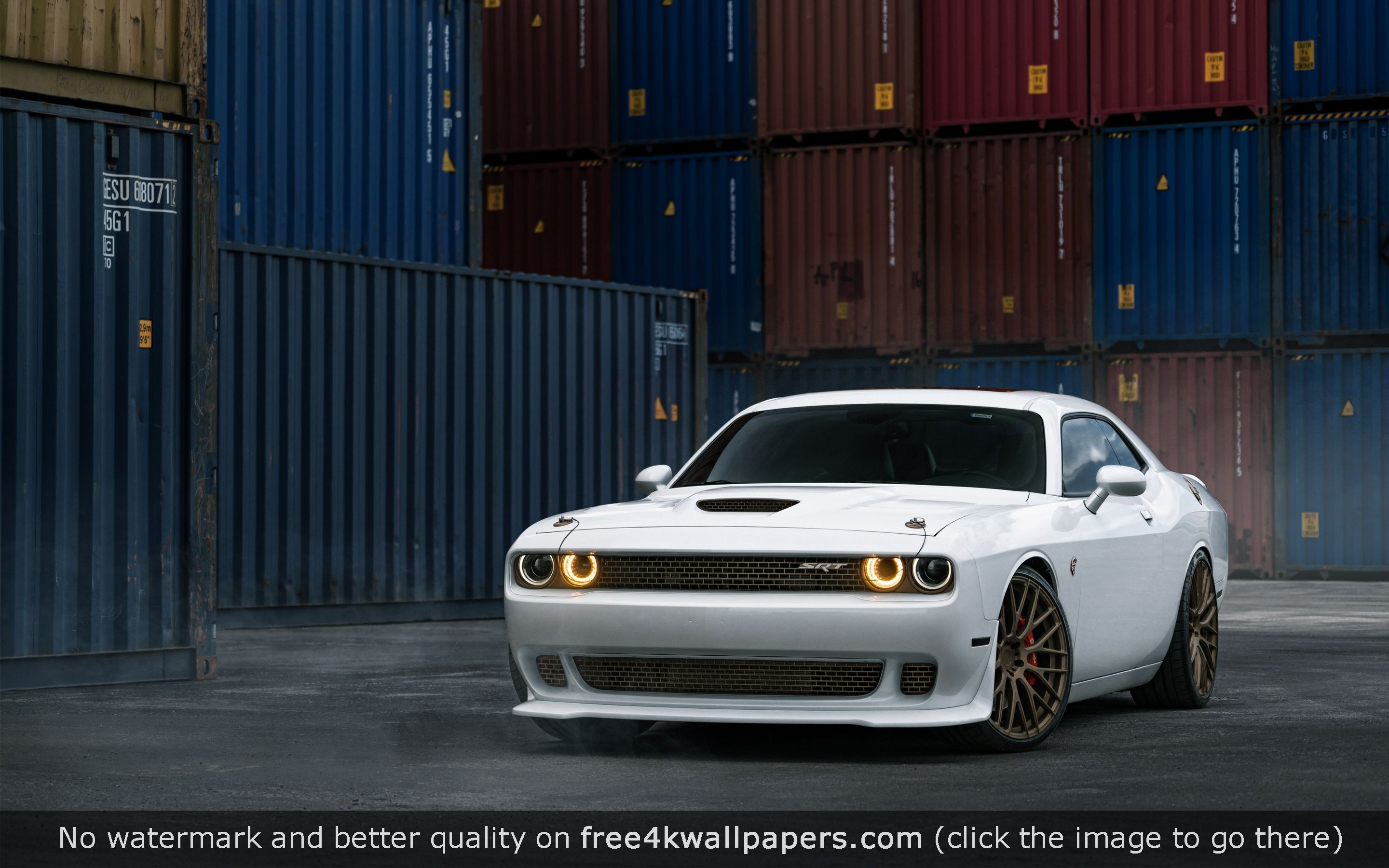Dodge Challengers RT SRT8Related Car wallpapers Collections 2880x1800