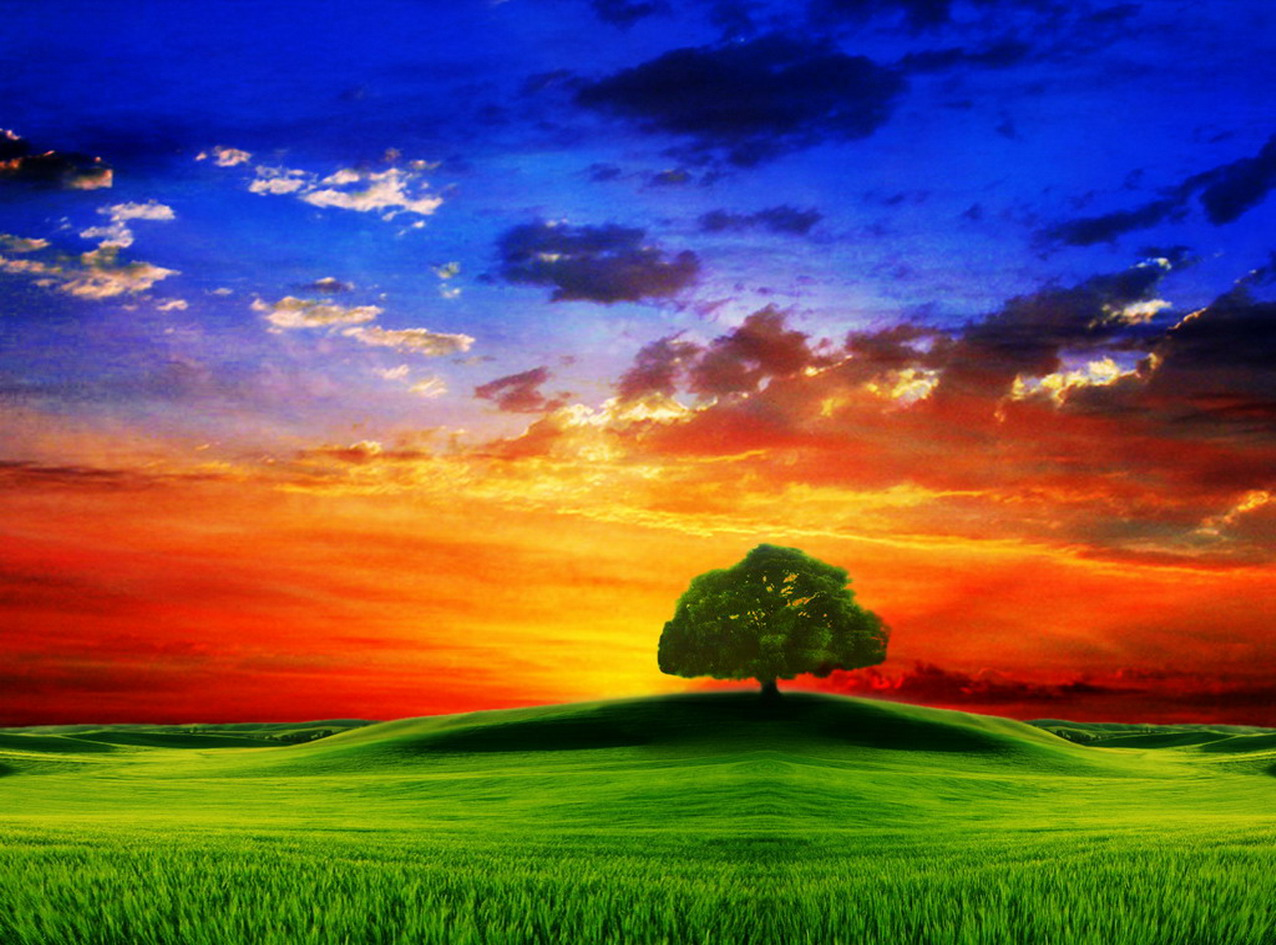 3D Wallpapers HD 3D Nature Wallpapers HD 1276x945