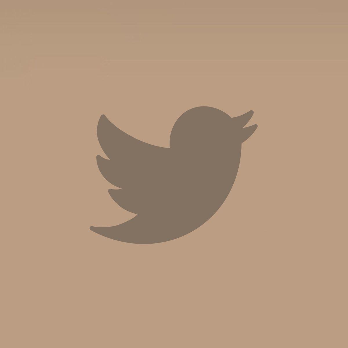 Twitter beige aesthetic app icon Iphone icon Ios icon App icon 1200x1200