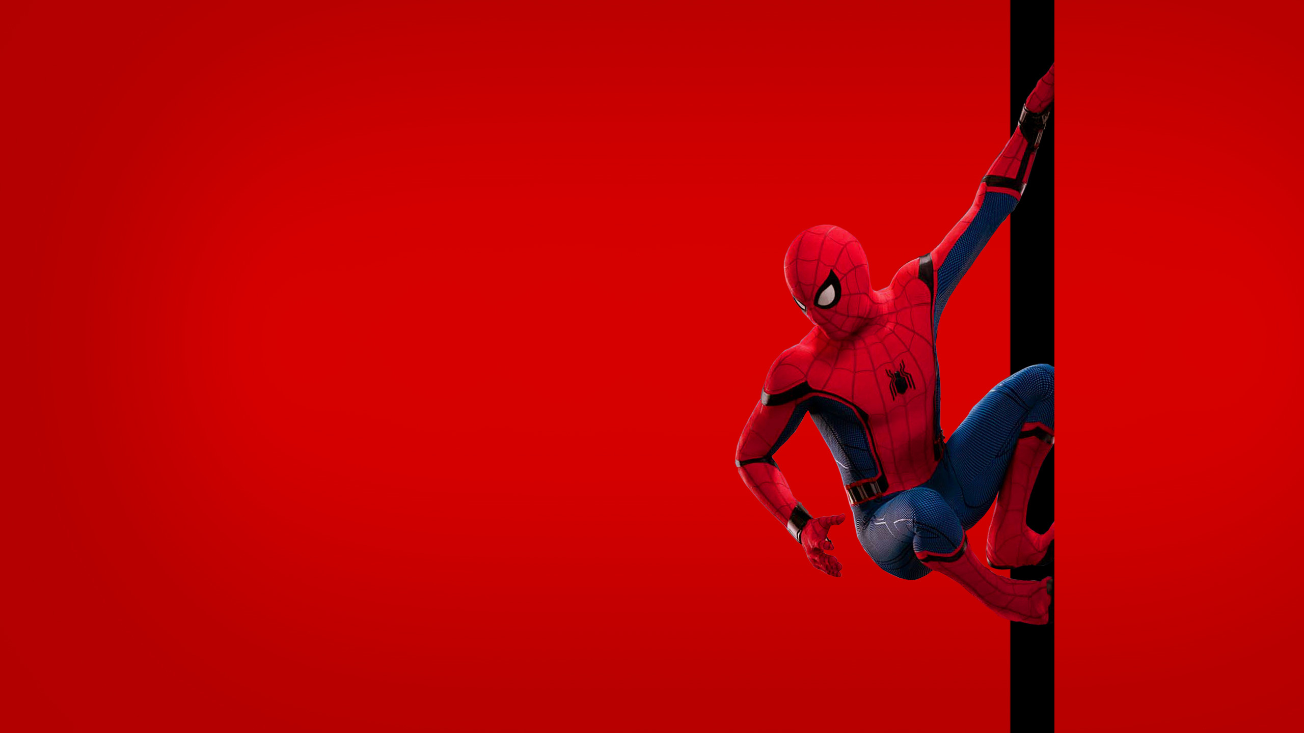 Spider Man Homecoming Wallpapers 63 images 2560x1440