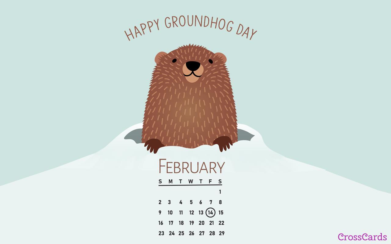 February 2020   Groundhog Day Desktop Calendar  February 1280x800