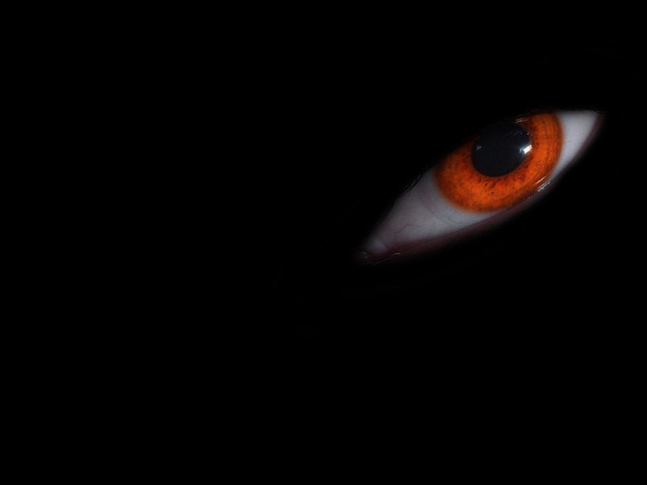 53 Eye HD Wallpapers Background Images 1280x960