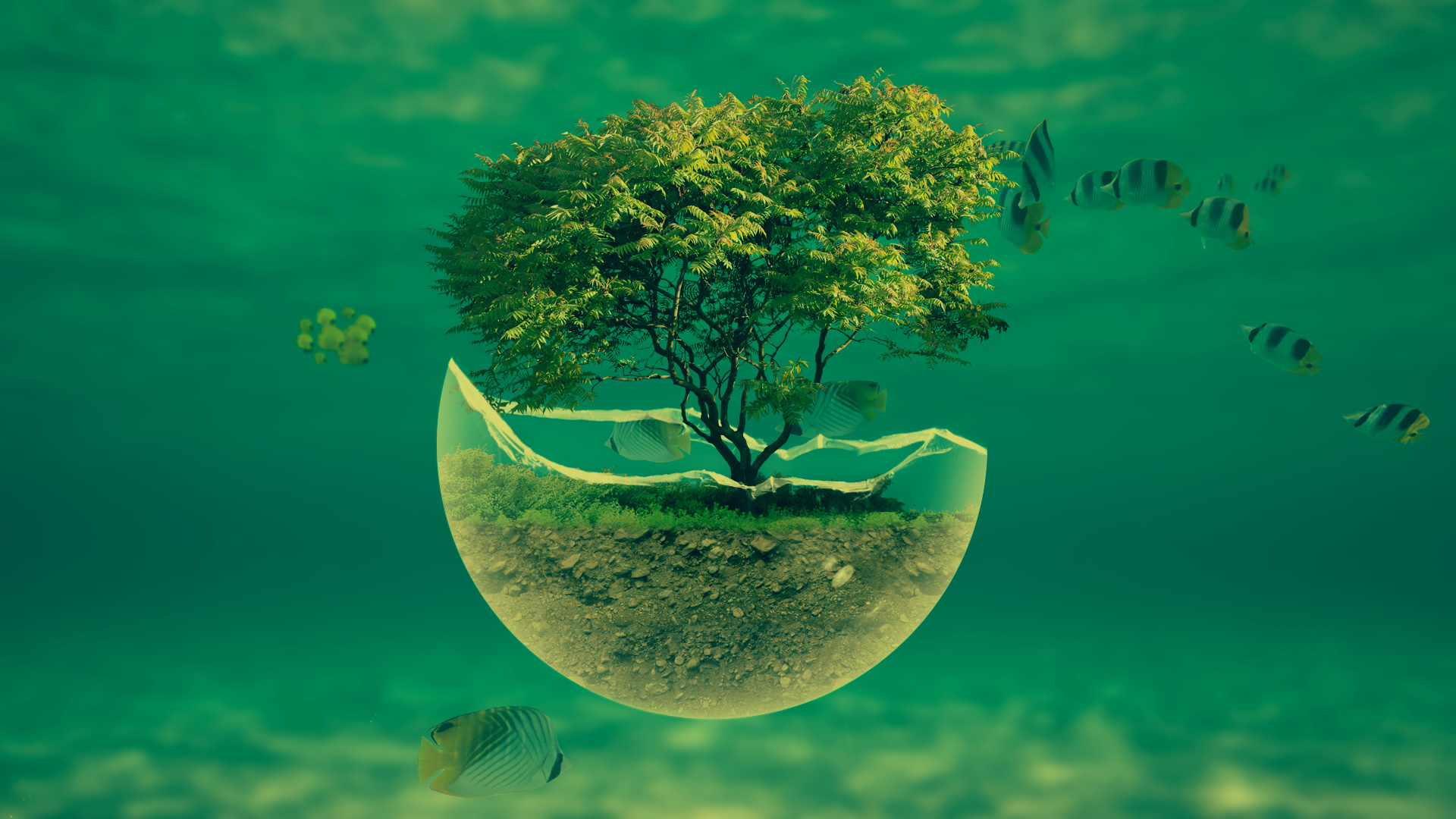 1920x1080 underwater tree widescreen hd abstract desktop wallpaper 1920x1080