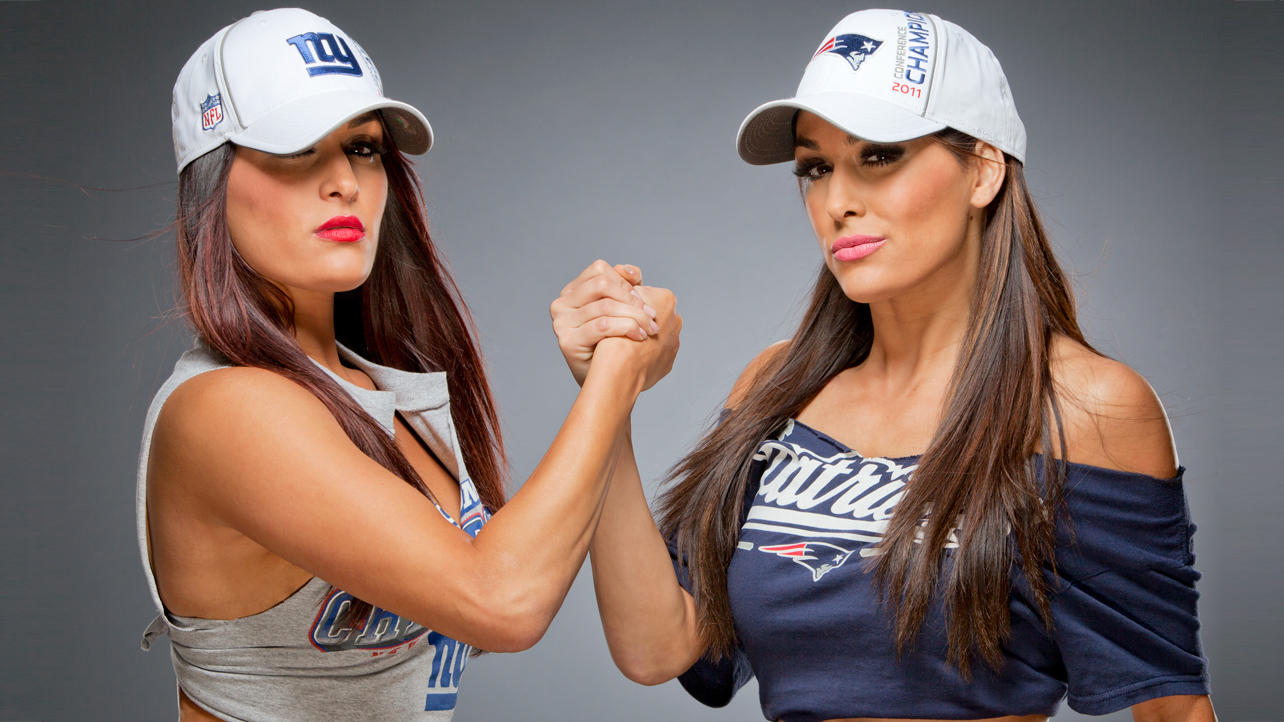 The Bella Twins Wallpaper 1074168 Source Wallpapers Desktop WallpaperSafari