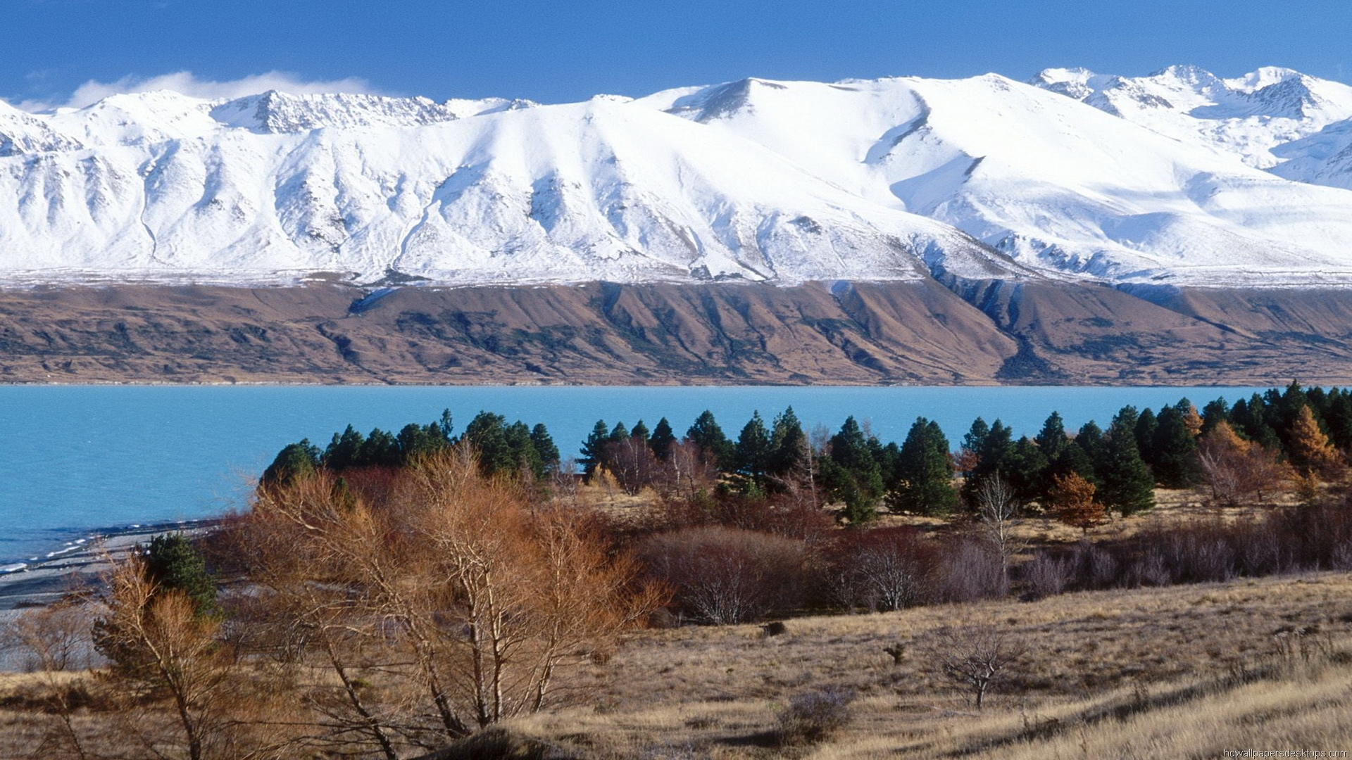 Free Download New Zealand Wallpaper Hd Travel Desktop