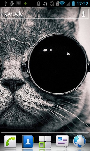 Cat with glasses HD Wallpaper App for Android 307x512