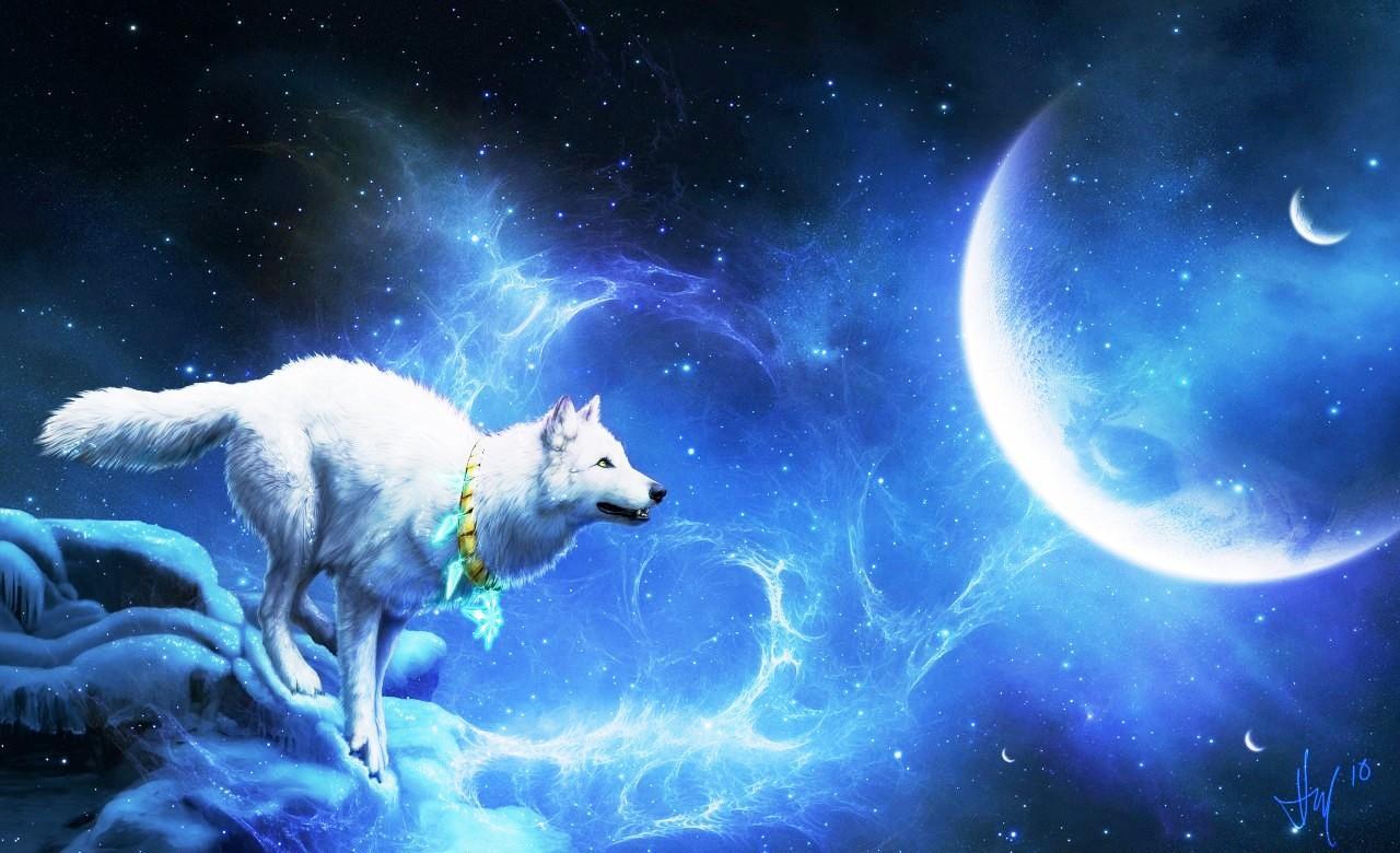 blue moon wolf wallpaper - photo #1