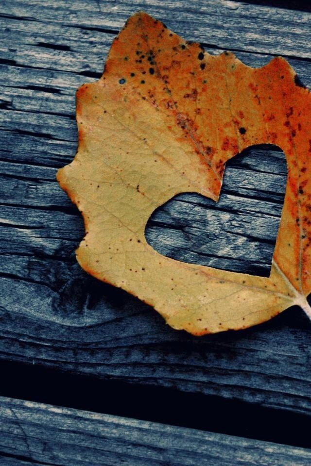 Rustic Fall Leaf Heart iPhone wallpaperFacebook Covers Fall Leaves 640x960