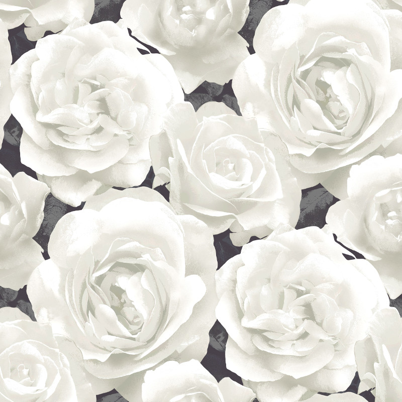 White rose background wallpapersafari for Black and white rose wall mural