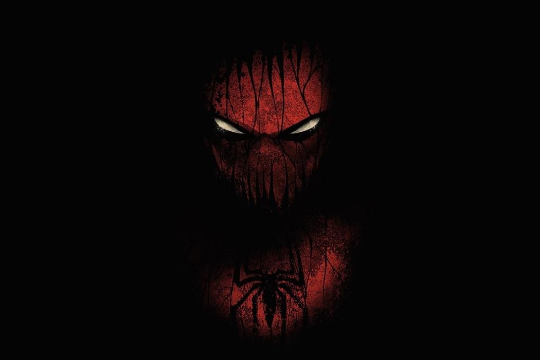 Spider Man HD Desktop Wallpaper Download 1050x700
