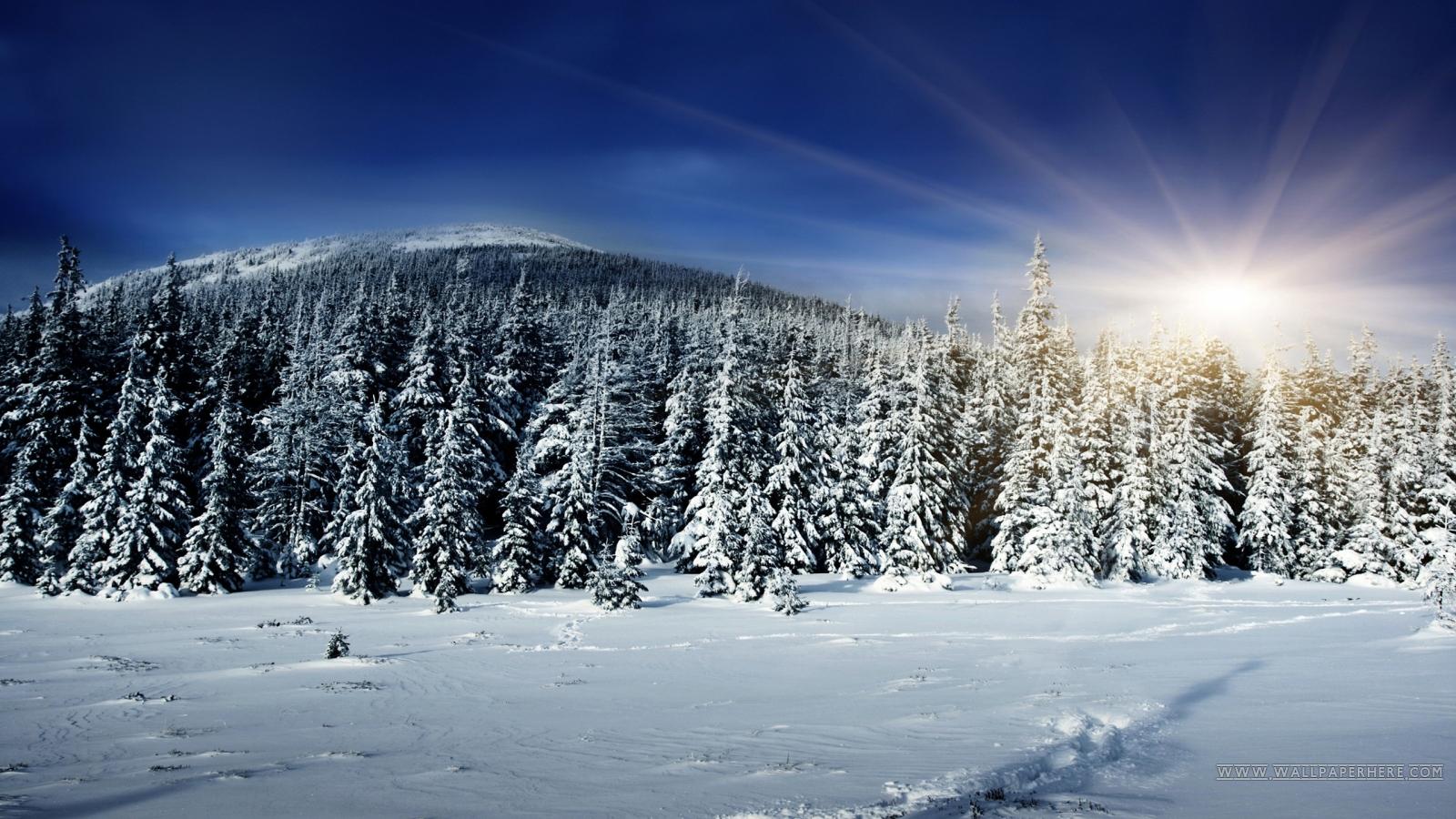 1600x900 hd desktop wallpaper winter - photo #4