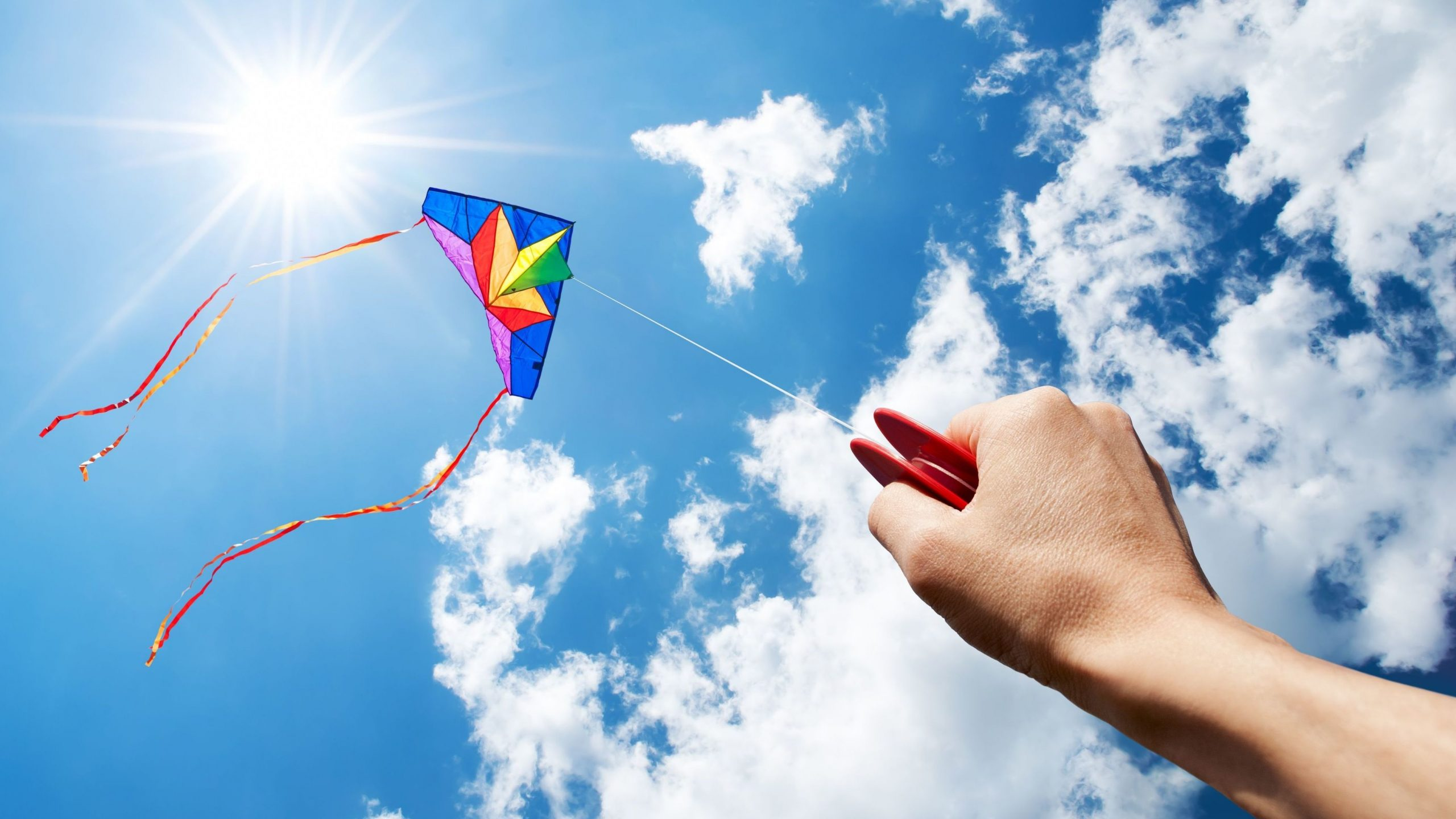 HD Wallpaper Of A Kite Flying High PaperPull 2560x1440