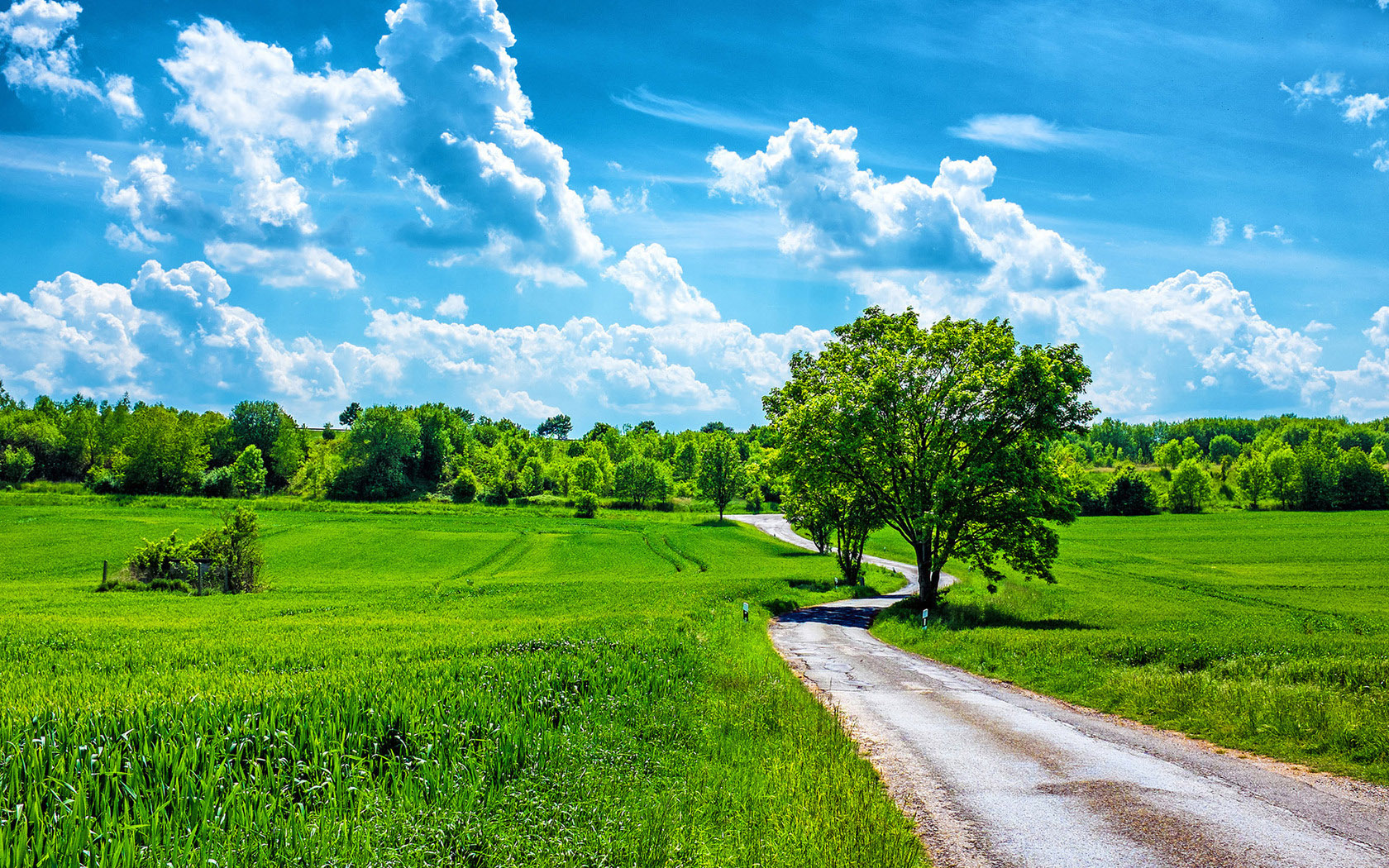 download Wallpapers Nature Landscape Beautiful Summer Day HD 1680x1050