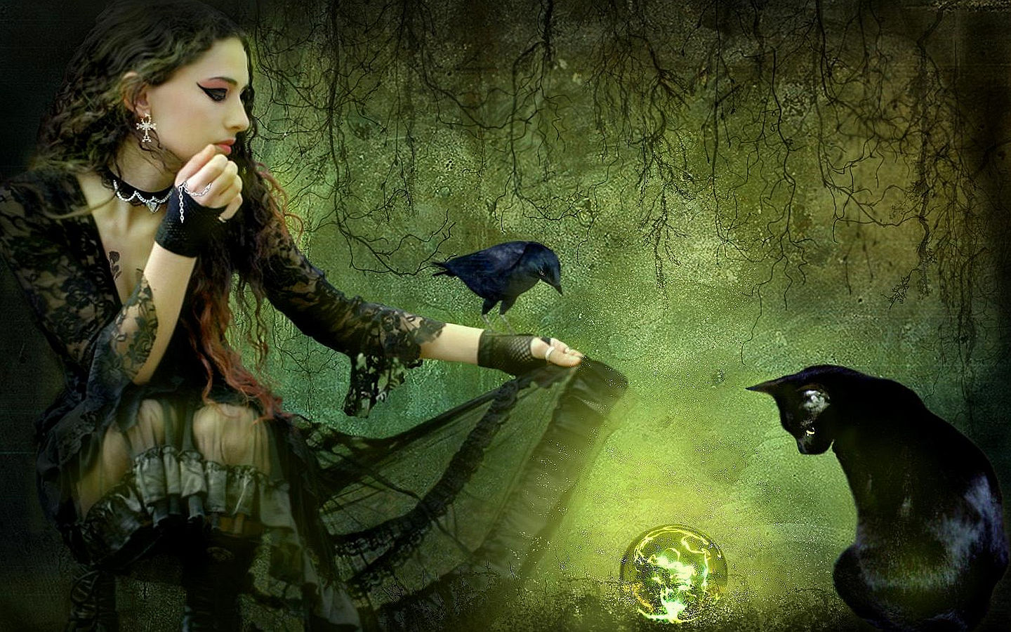 Witch Magic Forest Crystal Ball Raven Black Cat Woman Wallpaper 1440x900