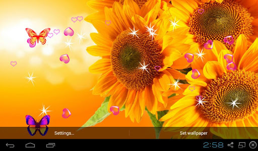 3D Sunflower Wallpapers   Android Market 512x300