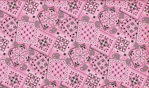 Gorgeous Light Pink bandana Cowgirls favorite by cutmcutecowgirl 500x297