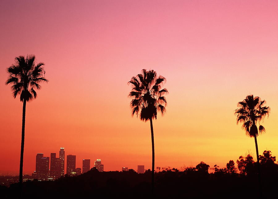 California Los Angeles Skyline And Palm Trees At Sunset by 900x647