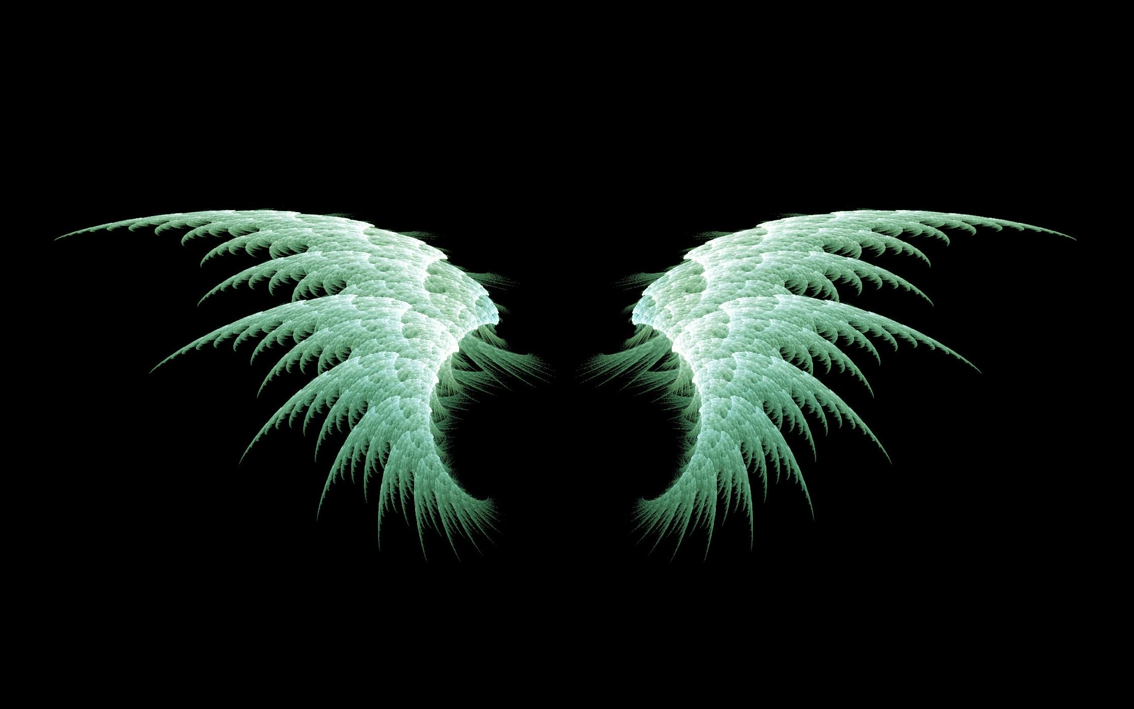 Wings Wallpapers HD Backgrounds Download   Baltana 2240x1400