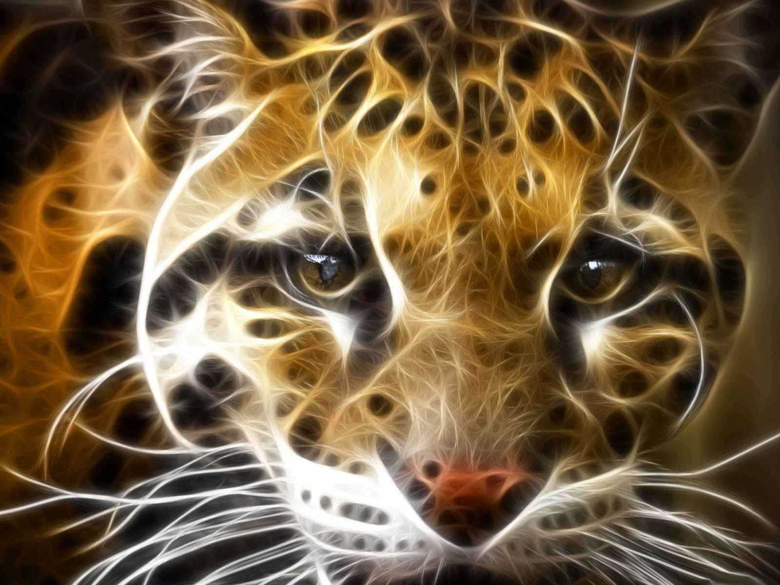 Tag Tiger 3D Wallpapers Images Photos Pictures And Backgrounds 1600x1200