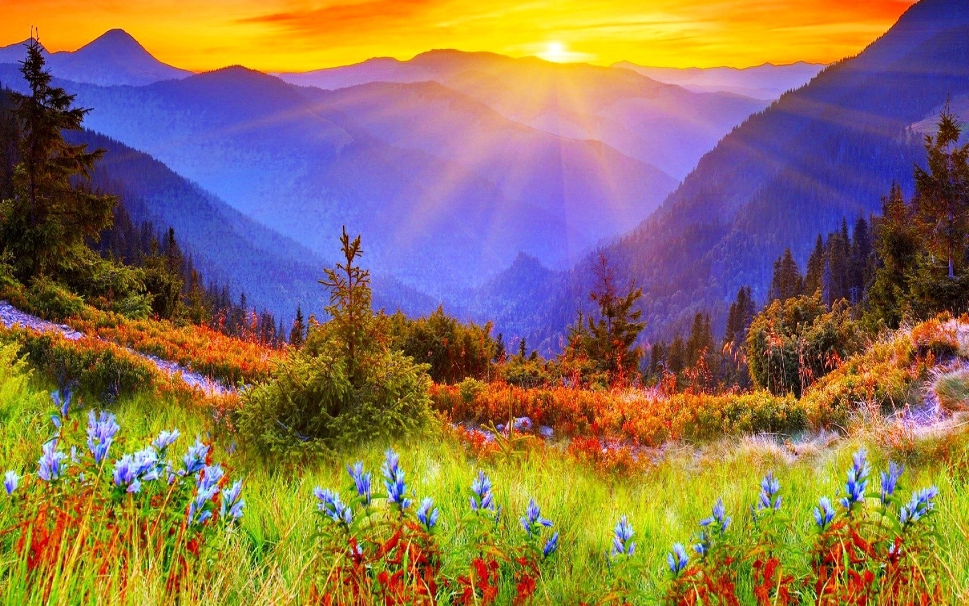 Beautiful sunrise wallpaper wallpapersafari for Stunning wallpapers