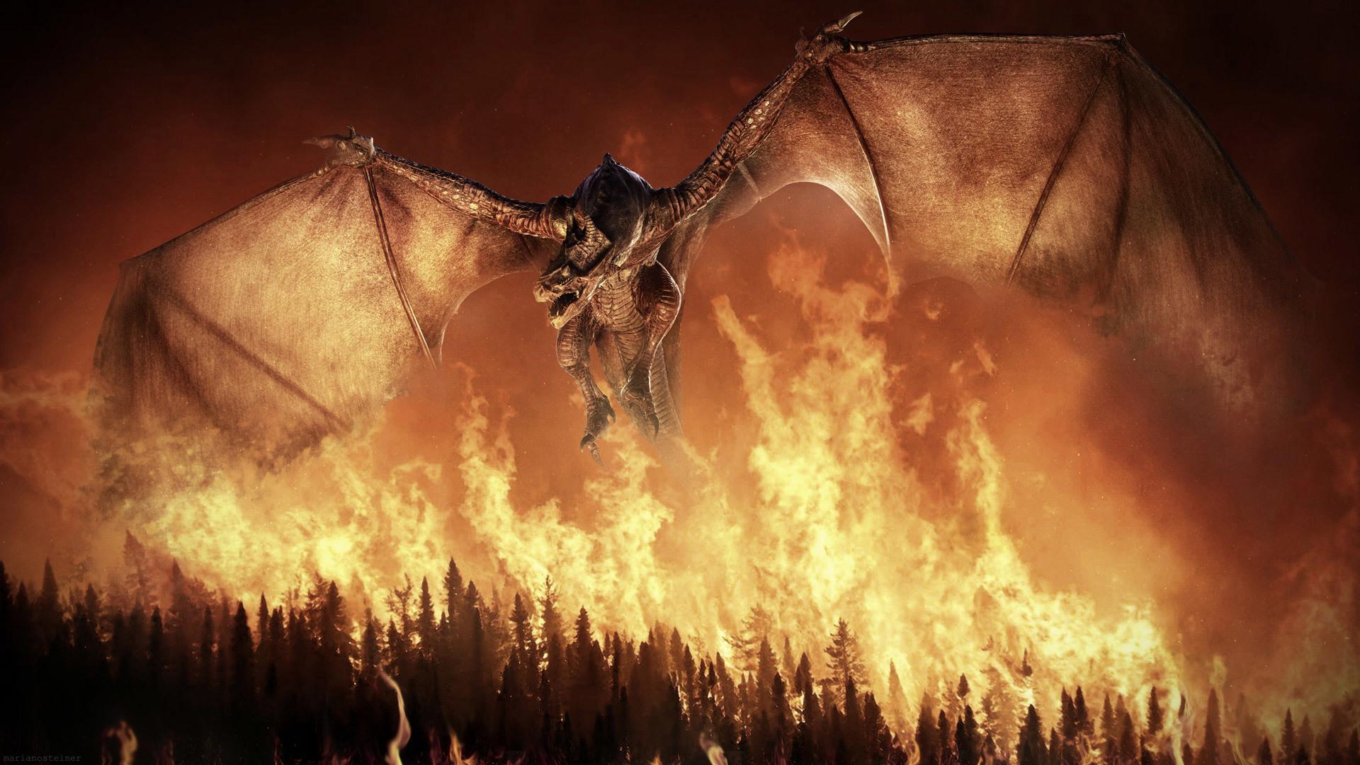 Wings of Fire Wallpaper - WallpaperSafari Fire And Ice Dragon Wallpaper