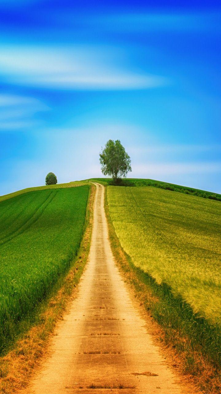 Dirt road landscape sunny day blue sky tree 720x1280 720x1280