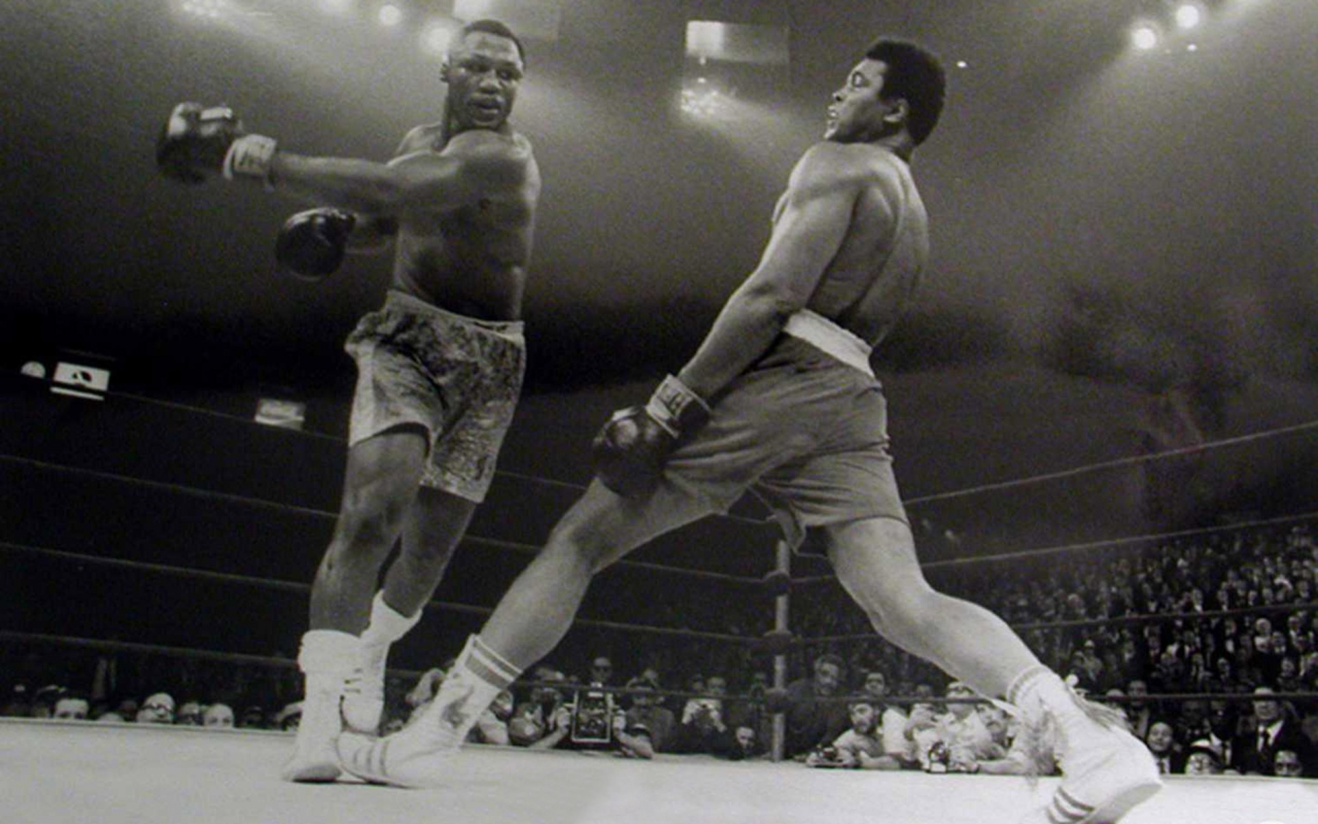 style muhammad ali boxing wallpaper wallpapers backgrounds 1920x1200